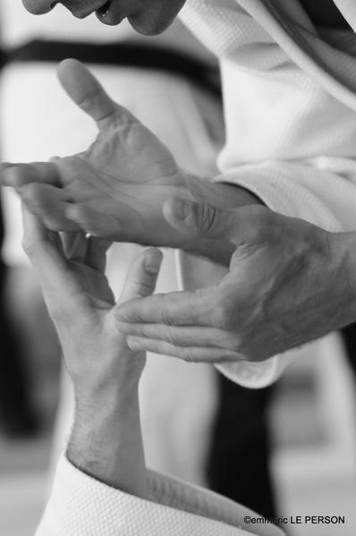 le judo gyroscopique